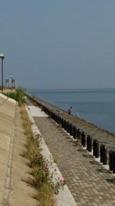 樽川埠頭2