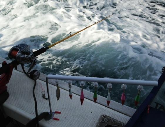 8/27 苫小牧イカ釣り | つり具センター | 釣り具の大型専門店