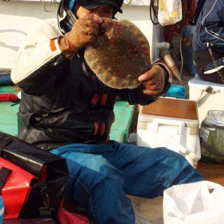 船釣り部会  第10回枝幸沖カレイ釣り大会