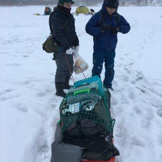 網走 能取湖氷上コマイ釣り遠征!